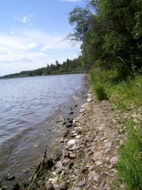 Pigeon-Lake-Shoreline