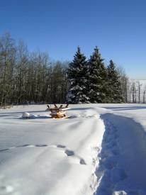 Winter-Wonderland-#3